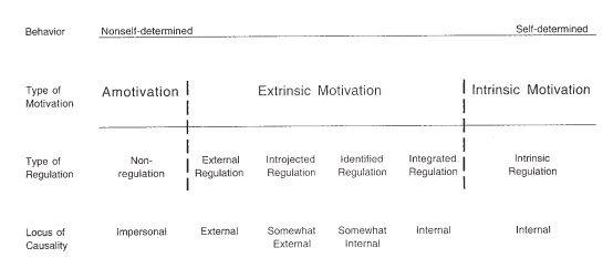 DECI-RYAN-Motivation Agile